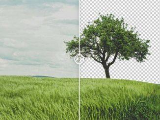 Topaz Mask AI full version- Công cụ tách nền cho ảnh hoàn hảo